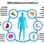 Quels sont les effets du CBD ?